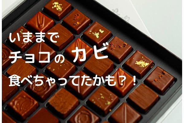 チョコレートにカビは生える